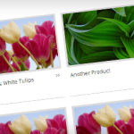 WP Catalogue WordPress Plugin